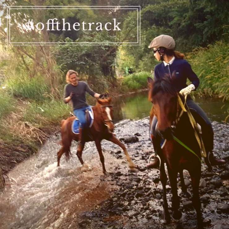 Horse-Riding-Thailand-Chiangmai-Tour