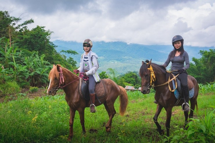 Horse-Riding-Thailand-Tour