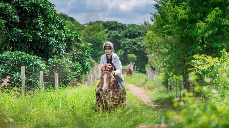 Horse-Riding-Thailand-Trail