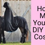 How To Make Your Own Diy Horse Costume 8 Examples