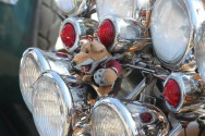 Basil Brush in the scooter headlights
