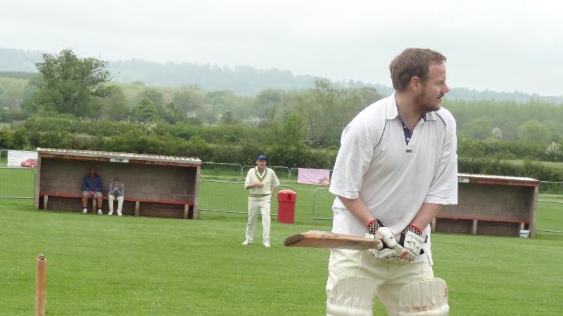 Cricket 019