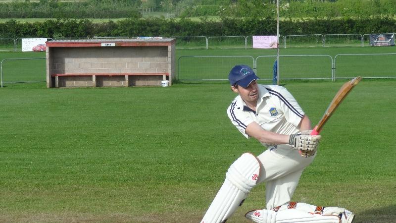 Cricket 028-1