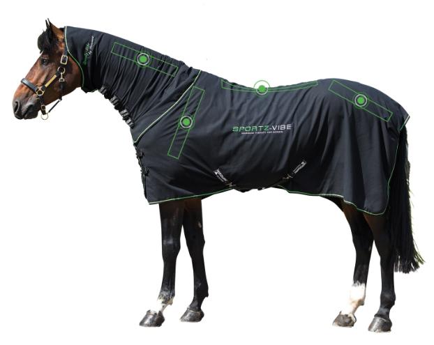 z-couverture-massage-cheval-z-2