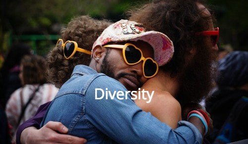 Diversity: the real silver bullet