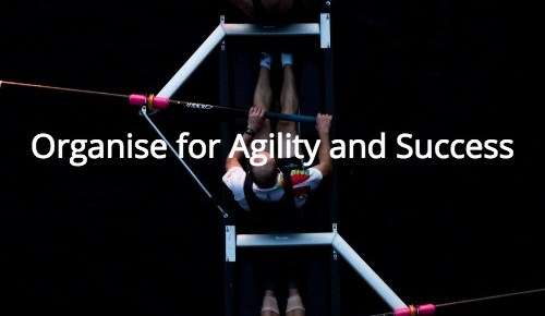 Company organisation for Innovation, Agility and Success