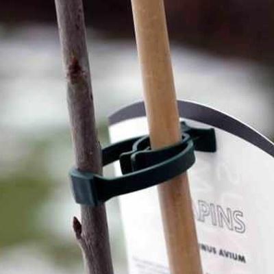 bato tree clasp
