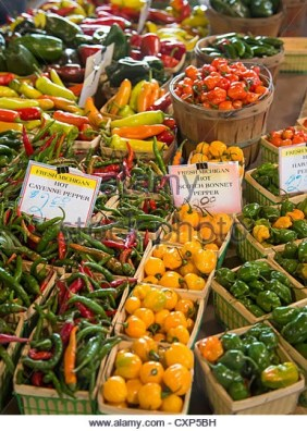 Detroit-michigan-peppers-on-sale-at-eastern-market-a-large-farmers-cxp5bh-Michigan-State-University-Extension