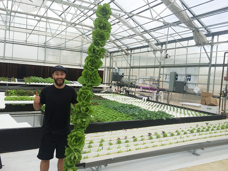Tyler Baras, special projects manager at Hort Americas, is overseeing the trialing of leafy greens and herbs in five different production systems. Photos courtesy of Tyler Baras, Hort Americas
