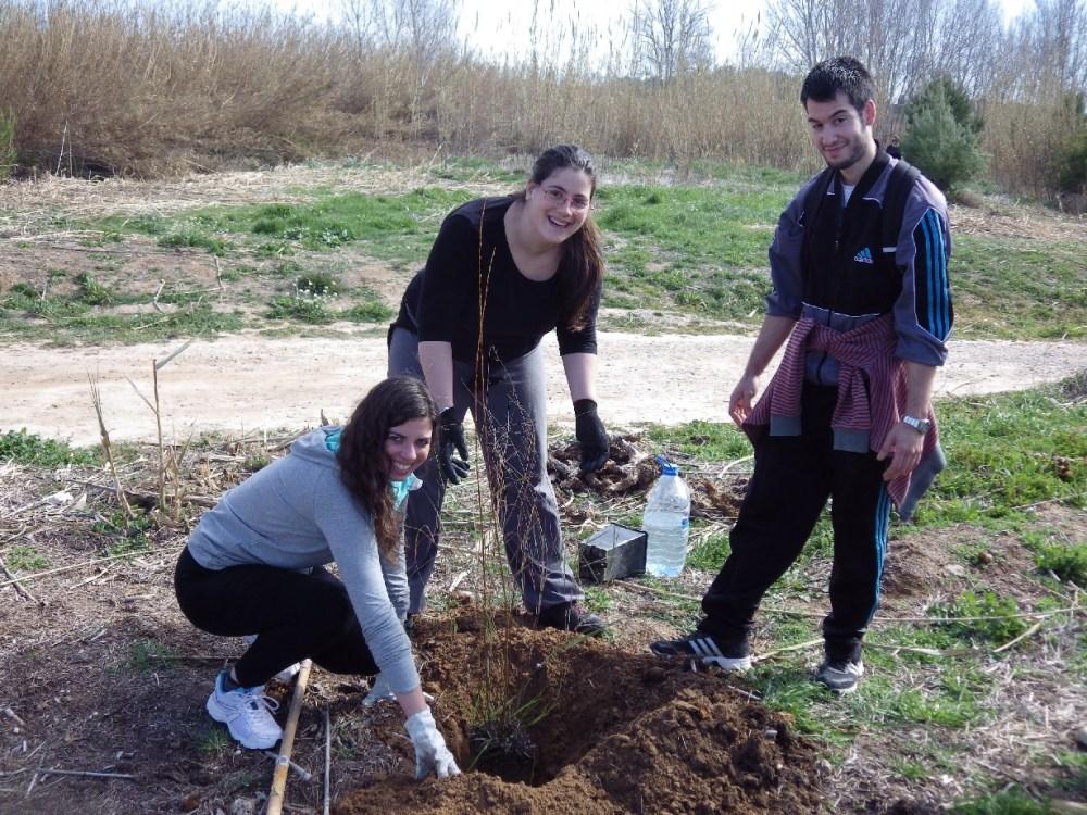 Crònica: Plantàrem més de 100 arbres junt al riu Túria... (5/6)