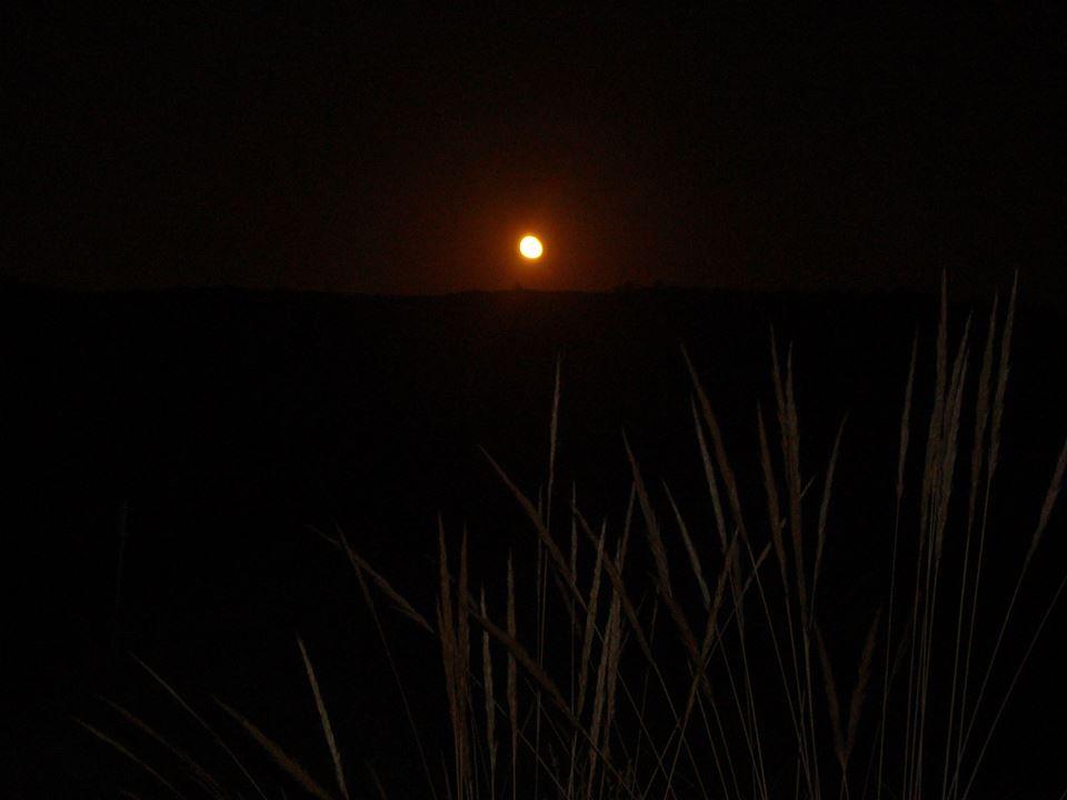 Ruta senderisme nocturn a Picassent (6/6)