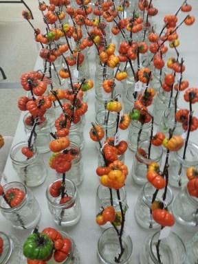 "Postharvest study of Eggplant ""cut flowers"""