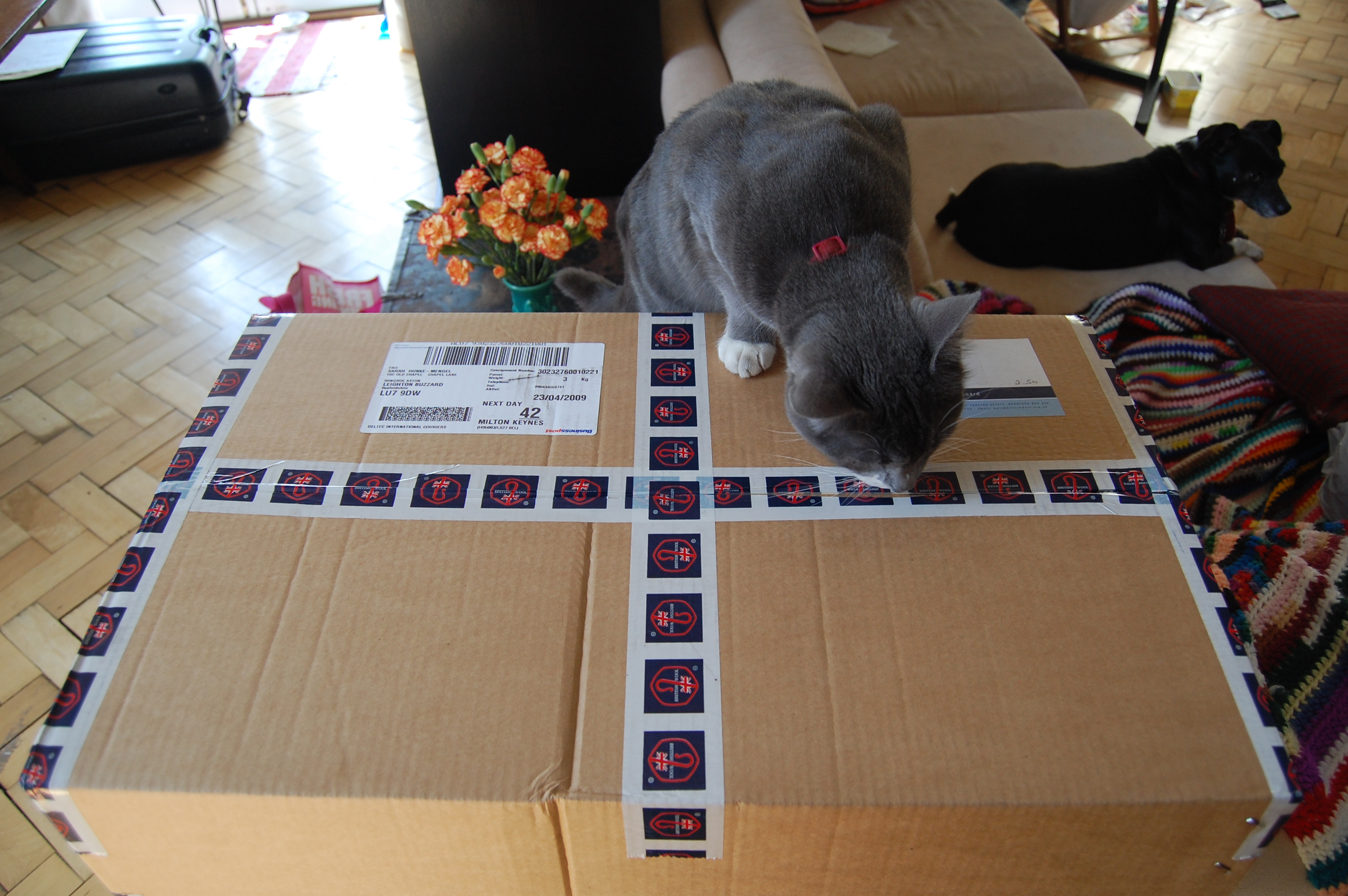Milo MUST inspect all packages upon entrance to the chapel