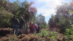 Educação Ambiental: visitas de alunos de escolas públicas ao horto.