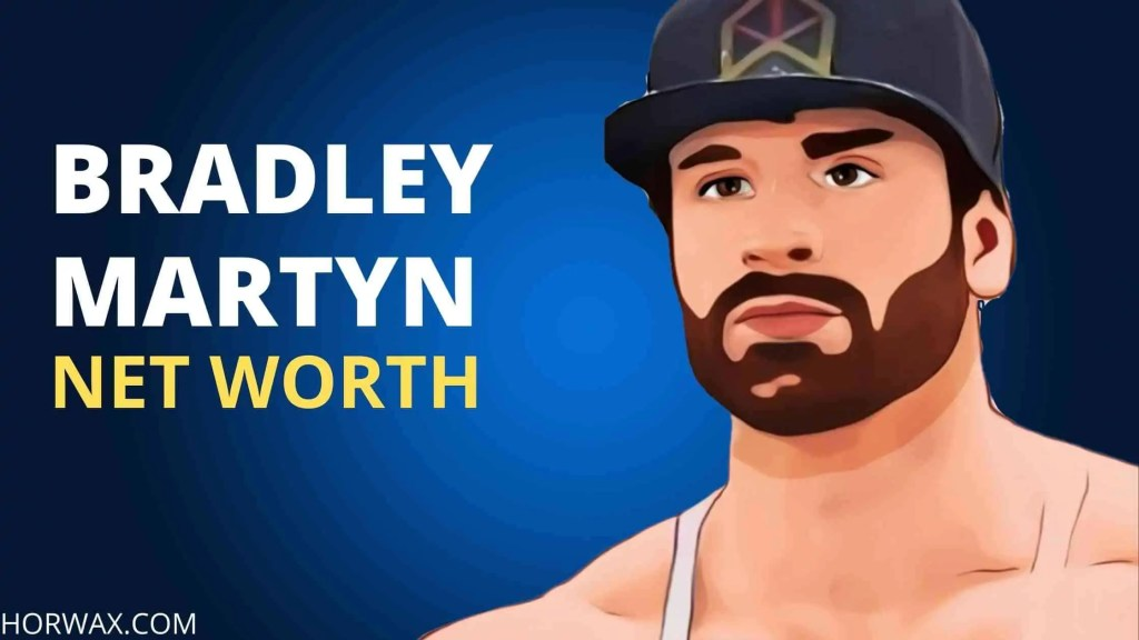 BRADLEY MARTYN NET WORTH