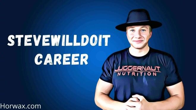 Stevewilldoit Career