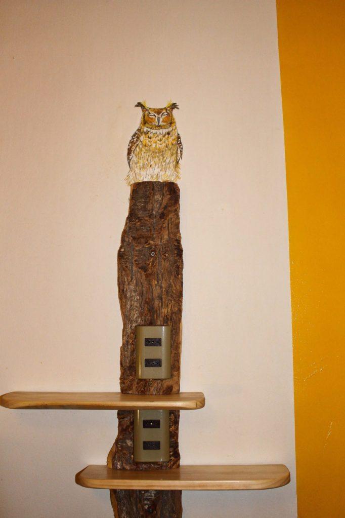 owl 2 4m