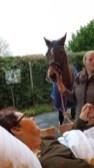 hospice-paard-dec-19-.21