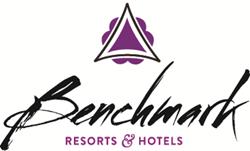 benchmark_color_logo