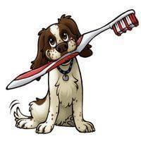 Descubre la importancia del cepillado dientes perro