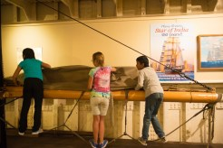 Learning how to gather sails - Star of India 2015
