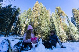 3-31-2016_The_Great_Spring_Break_Road_Trip_of_2016-Death_Valley-Sequoia-Yosemite__DSC2369