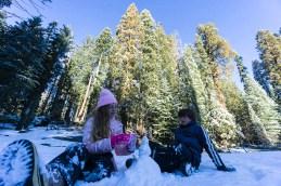 3-31-2016_The_Great_Spring_Break_Road_Trip_of_2016-Death_Valley-Sequoia-Yosemite__DSC2369