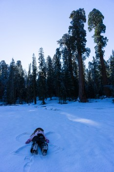 3-31-2016_The_Great_Spring_Break_Road_Trip_of_2016-Death_Valley-Sequoia-Yosemite__DSC2413