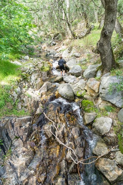 3-31-2016_The_Great_Spring_Break_Road_Trip_of_2016-Death_Valley-Sequoia-Yosemite__DSC3049