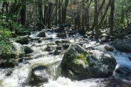 4-1-2016_The_Great_Spring_Break_Road_Trip_of_2016-Death_Valley-Sequoia-Yosemite__DSC10161
