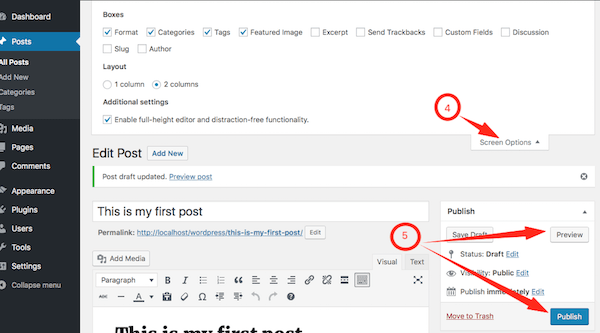 Publishing a Post in WordPress