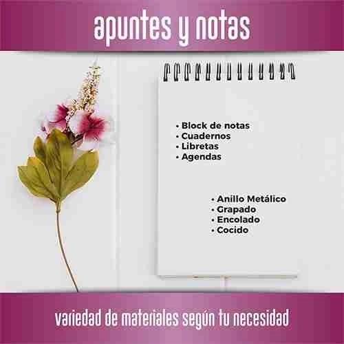 Apuntes y notas   Gráficas Paola