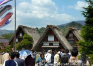 Thatched roof housing in the free area