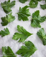Dried Herbs | Hostess At Heart
