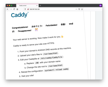 Securing Shiny Server with Caddy