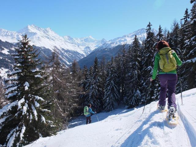 Schneeschuhtour-schweiz-wallis (17)