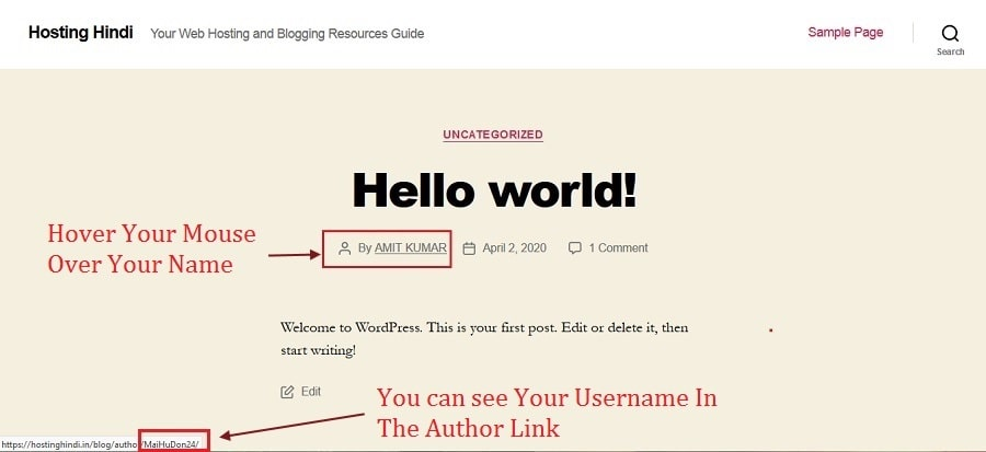 checking username in author URL in WordPress