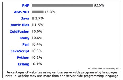 Usage of server-side programming languages