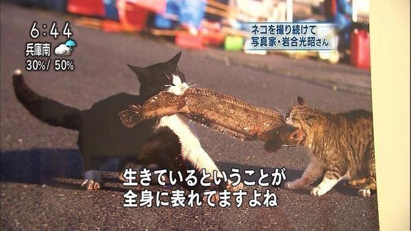 20151027043808_115_3