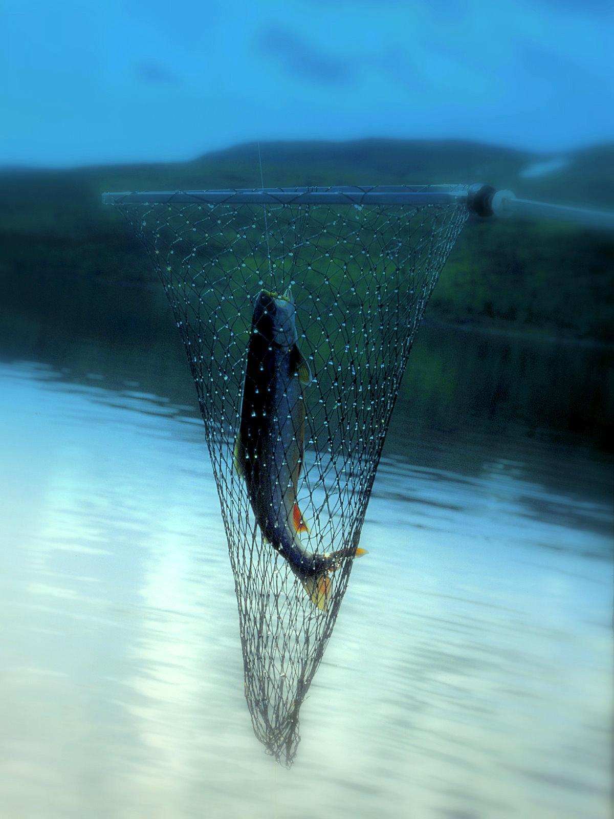 Det behövs bara ett fiskekort - fiskelycka med Hotagenkortet. Foto Kjell-Erik A.