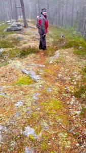 Skogsbad i Hotagsbygden. Foto Maritha Grelsson