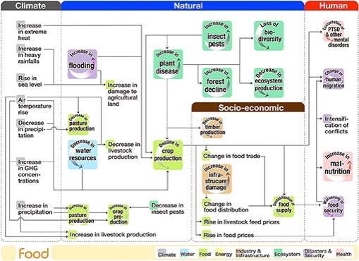 Flow Chart Climate