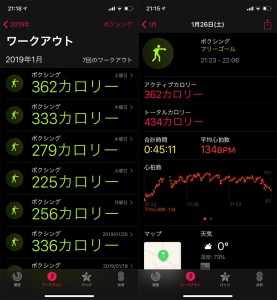 Fit Boxing Apple Watch Series 4