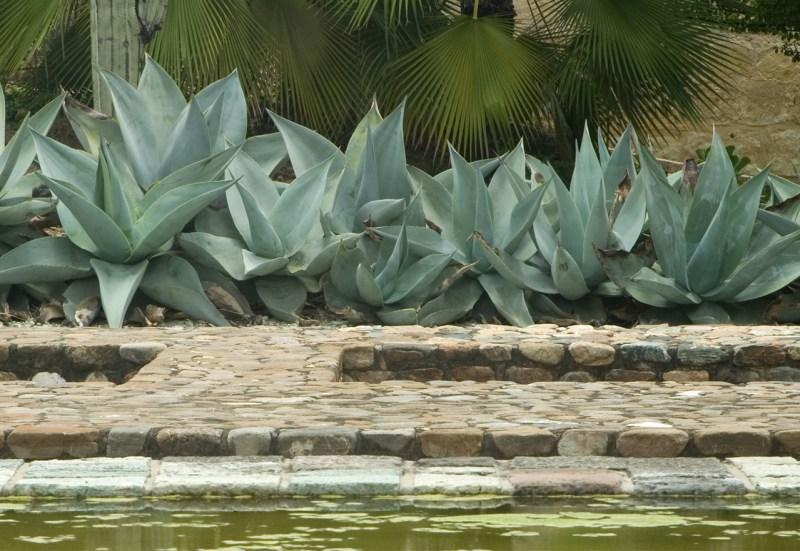 Oaxaca en tres días - galeria44