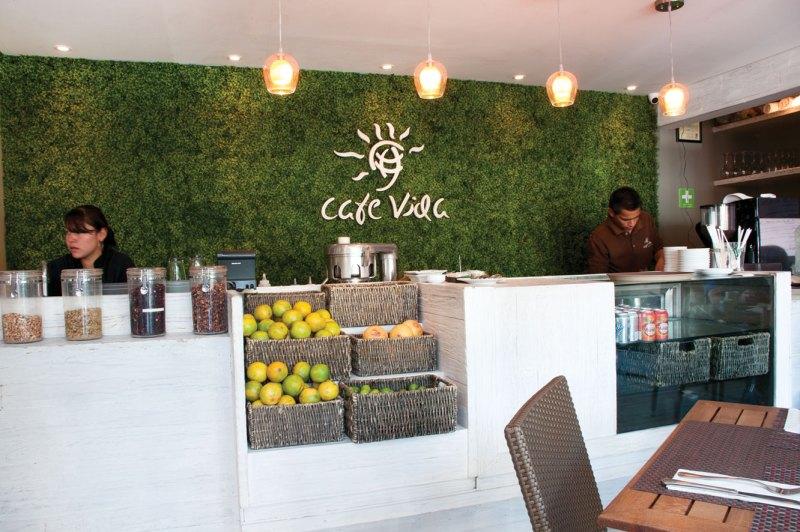 Restaurantes orgánicos en la Ciudad de México - hotbook-6