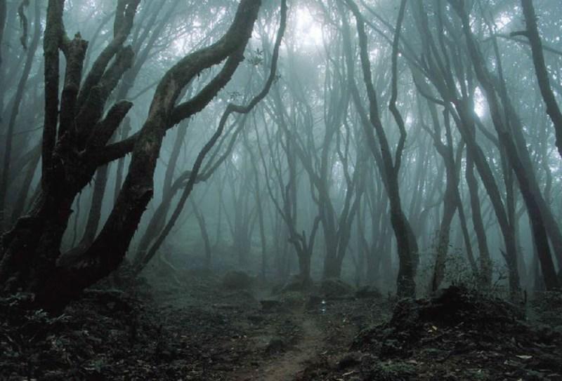 Los lugares más terroríficos del mundo - 45-1024x696