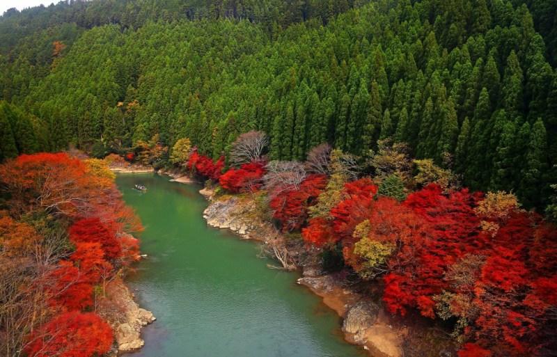 Kioto: Labios Rojos, Sol Naciente - arashiyama-min
