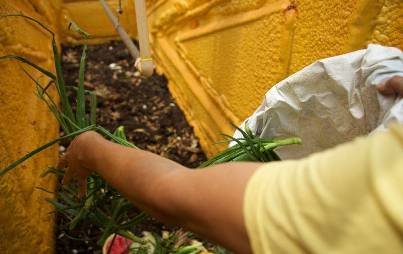 De desechos a recursos - de-desechos-a-recursos-foto9
