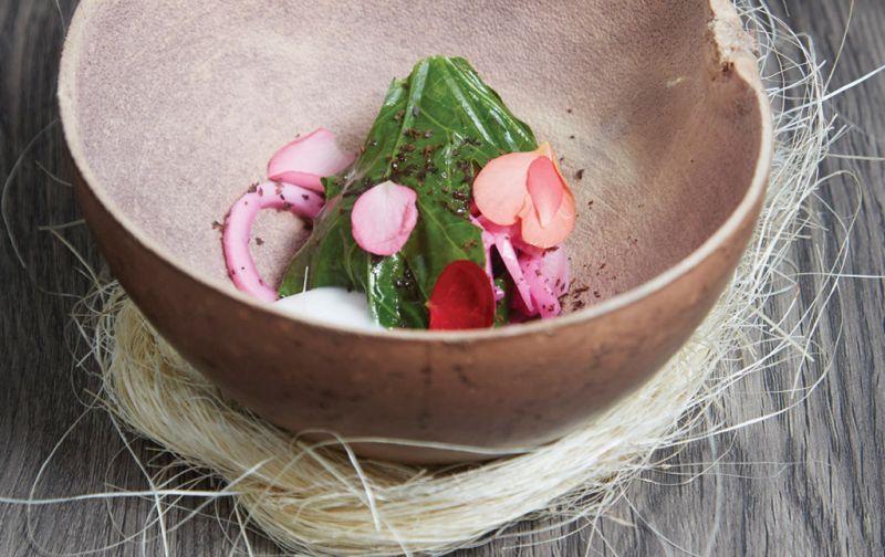 #HOTgourmet Hokol Vuh, un proyecto gastronómico liderado por René Redzepi y Roberto Solís en Yucatán. - hokol-vu-hv-5