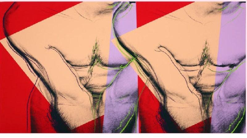 Andy Warhol: Ilustrador, artista y genio social - torso.-aw